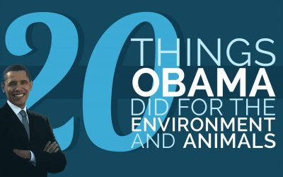 20 Things Obama Did for the Environment and Animals