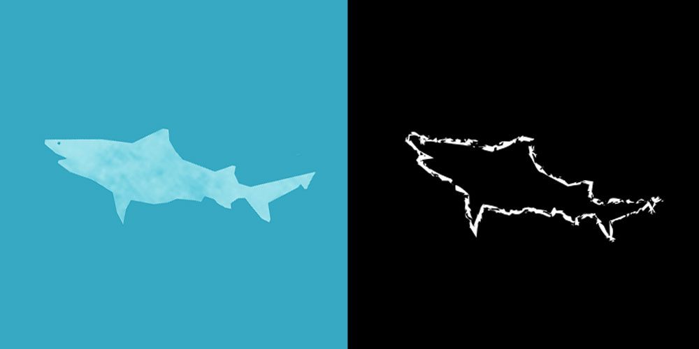 Speartooth Shark | Endangered Species | Cause You Care